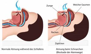 Weicher Gaumen, Zunge, Rachen und Zäpfchen beim Atmen